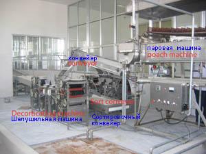 производство арахиса оборудование