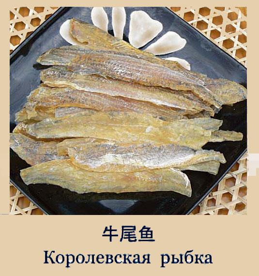королевская рыбка