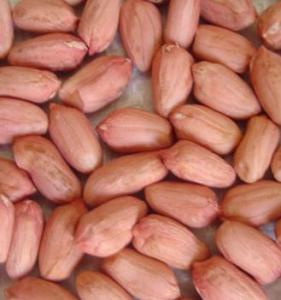 Продам арахис ядрами