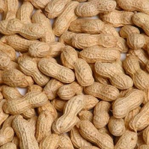 roasted-peanut-in-shell